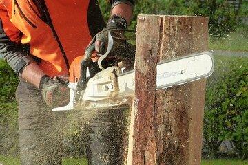 Hombre cortando un tronco con una Motosierra de gasolina